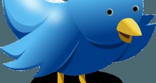 Le réseau social Twitter permet d'utiliser des médias comme les images et les vidéos.